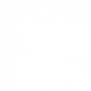 ELEFANTE_EN_LA_HABITACION